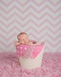 Newborn Photography Sonoita AZ